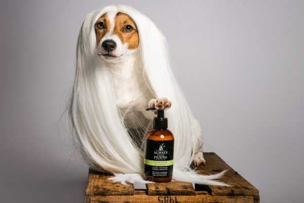 Rejuvenation Pet Conditioner 3 min