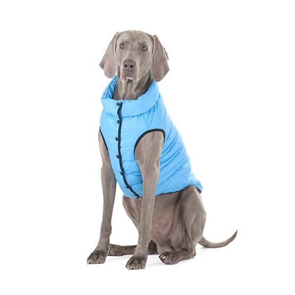 airvest one blue 1