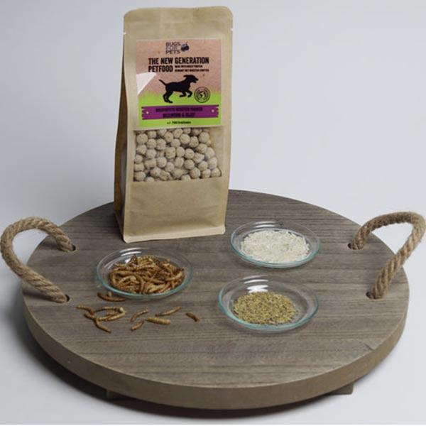 le cleps bugs for pets larva farinha de arroz 1