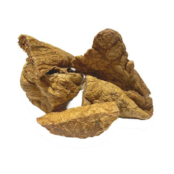 le cleps pulmao de camelo