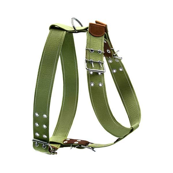 le cleps waudog collar harness 2
