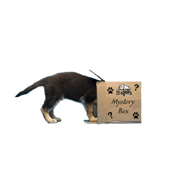 lecleps mistery box 1