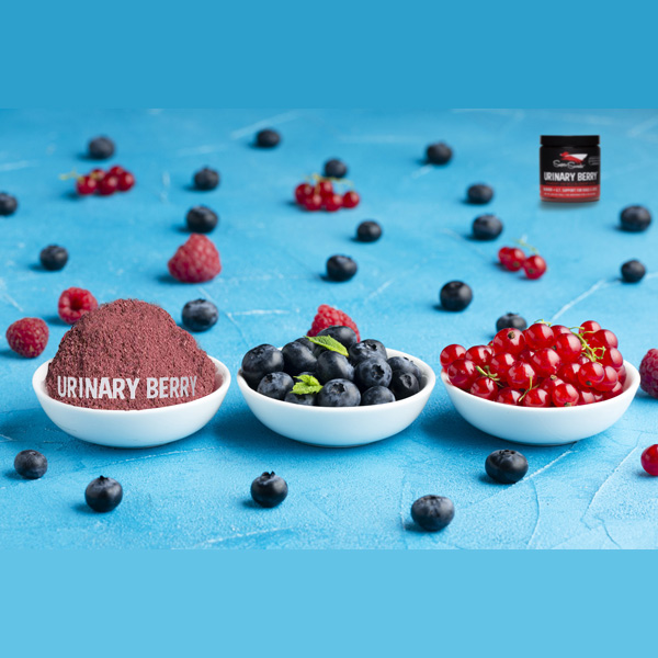 lecleps urinary berry 2