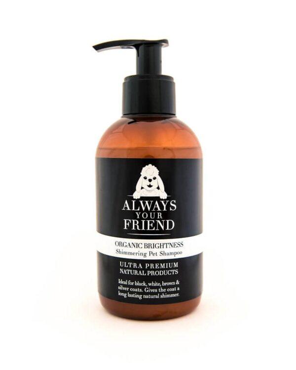 Always Your Friend - ORGANIC BRIGHTNESS SHAMPOO - 250 ml - Le Clep's