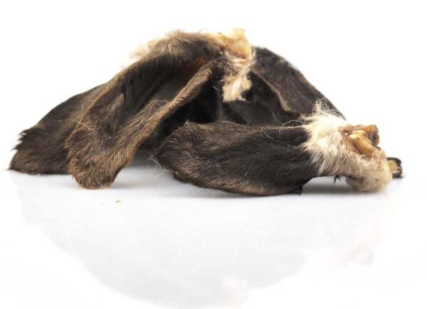 Orelhas de Cordeiro - Le Clep's