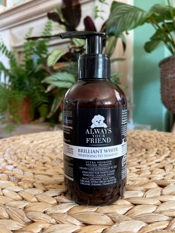 Always Your Friend - WHITENING SCHAMPOO - 250 ml - Le Clep's